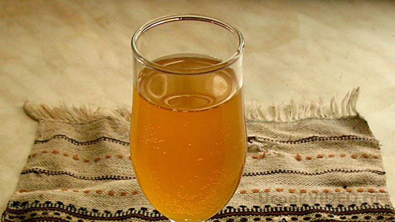 приготовление чайного гриба в домашних условиях