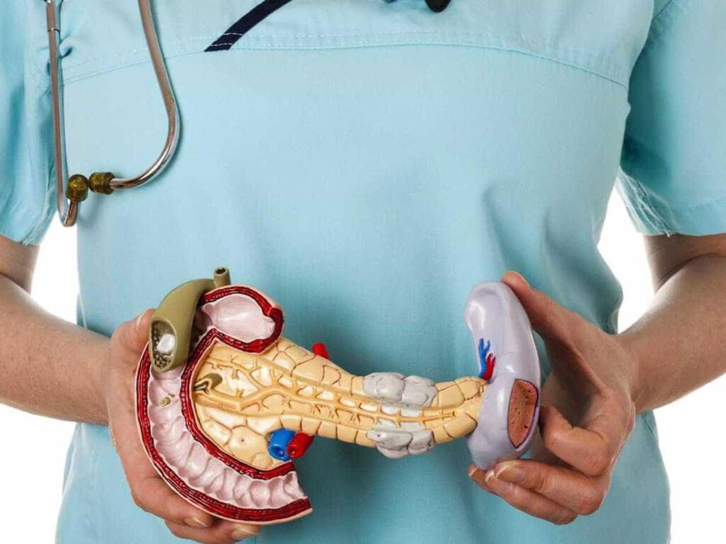 Панкреатит: симптомы и лечение у взрослых. Диета: что можно есть, а что нельзя при панкреатите